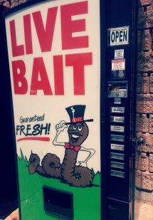 Yes, Live Bait...