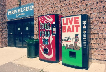 Live Bait next to Paris Museum, Toronto