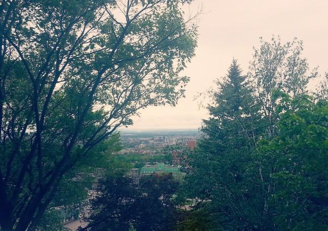 Overlooking Montreal 2