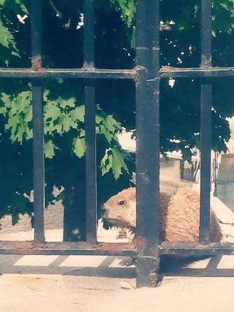 PicsArt_12-13-07.07.02