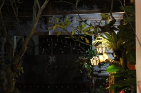 Looking out at the street from Savannah Moon restaurant, Ubud #nofilter #noedit