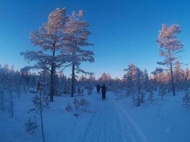 Cross country skiing! Images taken on GoPro.